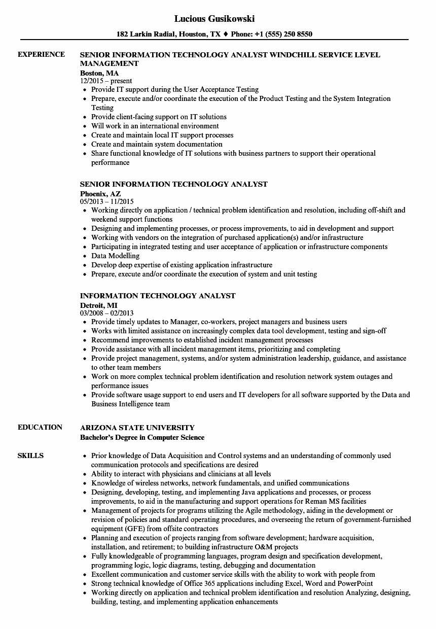 Information Technology Analyst Resume Samples
