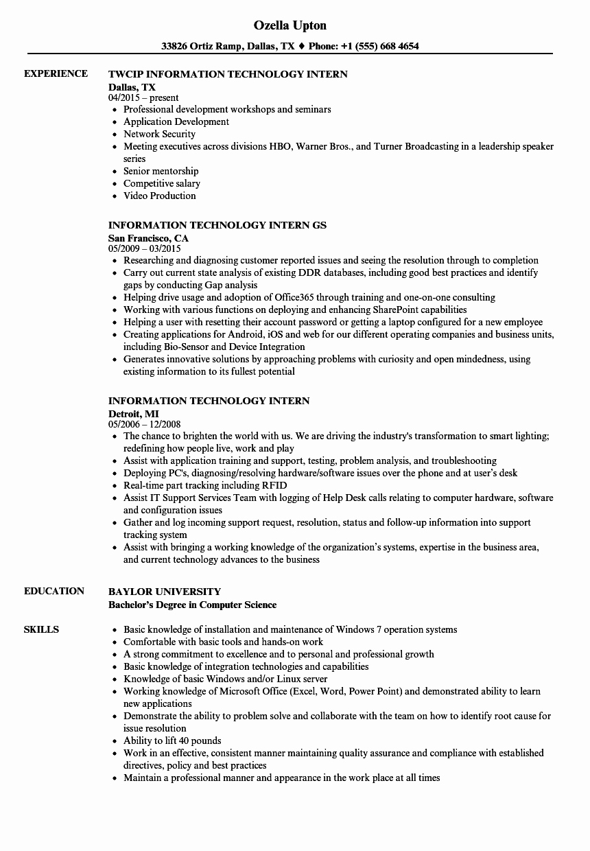 Information Technology Intern Resume Samples