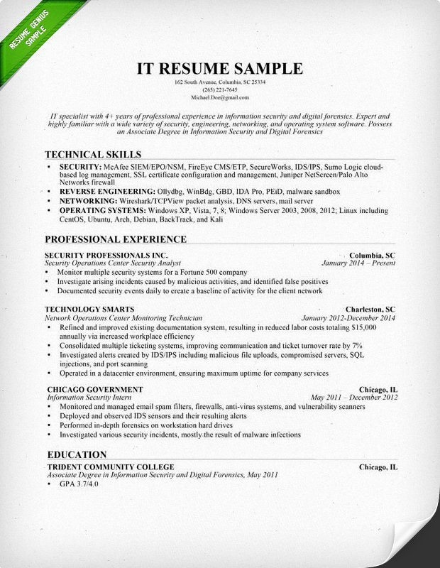 Information Technology It Resume Sample