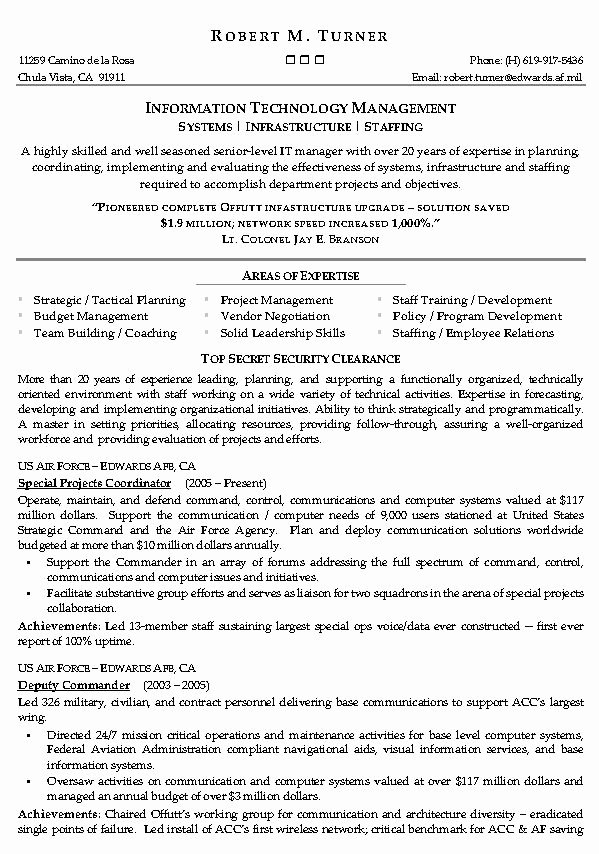 Information Technology Management Resume Example It