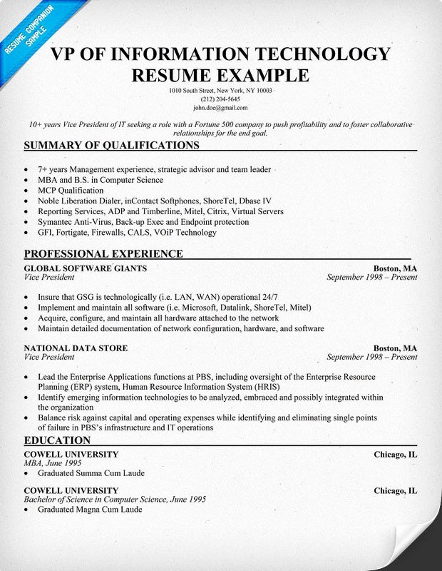 Information Technology Resume Sample Entry Level