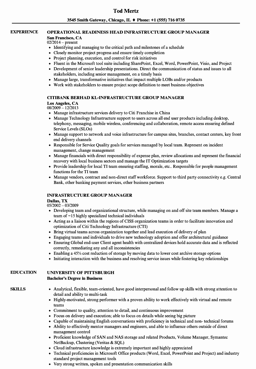 Infrastructure Group Manager Resume Samples