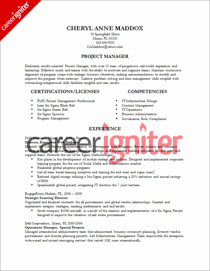 Infrastructure Project Management Resume Examples – Job