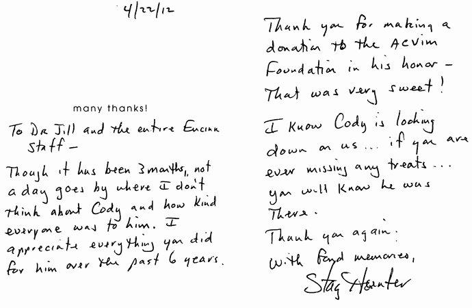 Inspirational Post Internship Thank You Letter