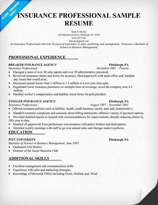 Insurance Agent Resume Examples Best Resume Collection
