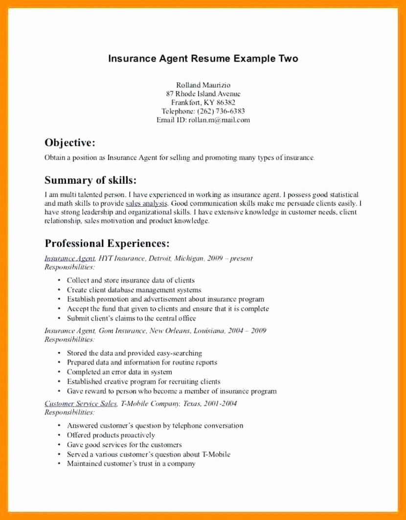 Insurance Agent Resume Sample Sarahepps