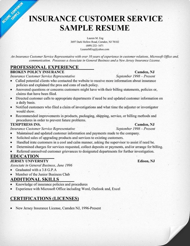 Insurance Customer Service Resume Sample Resume Panion
