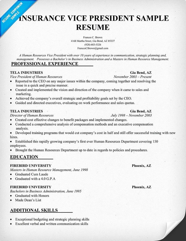 Insurance Vice President Resume Sample Insurance