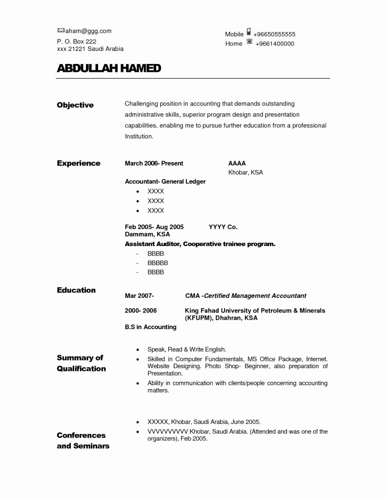Internal Auditor Resume Examples