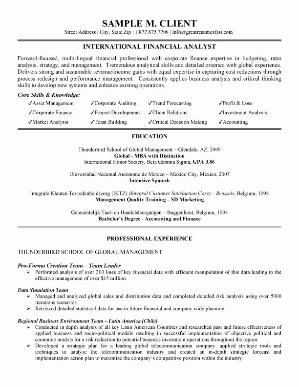 International Financial Analyst Resume