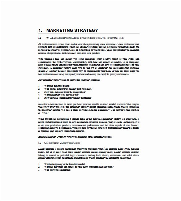 International Marketing Plan Template 10 Free Sample