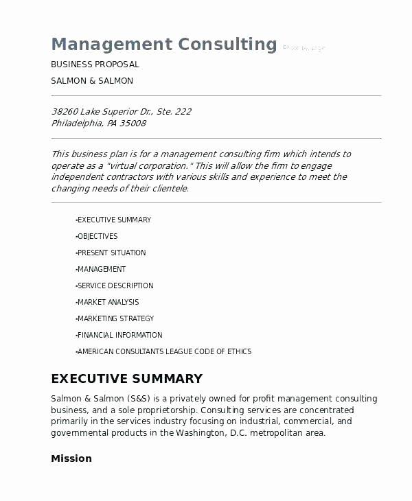 It Consulting Proposal Template – Kazakiafo