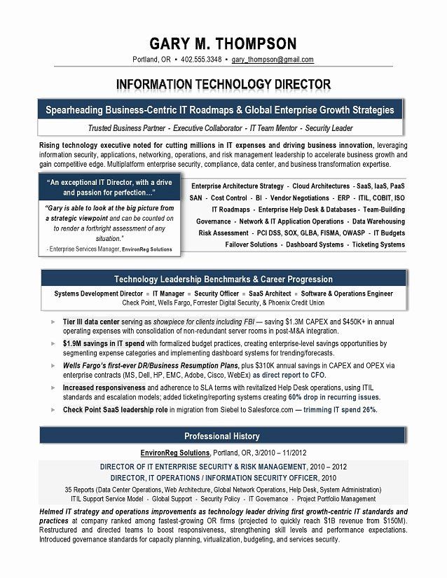 It Director Sample Resume It Resume Writer Technical