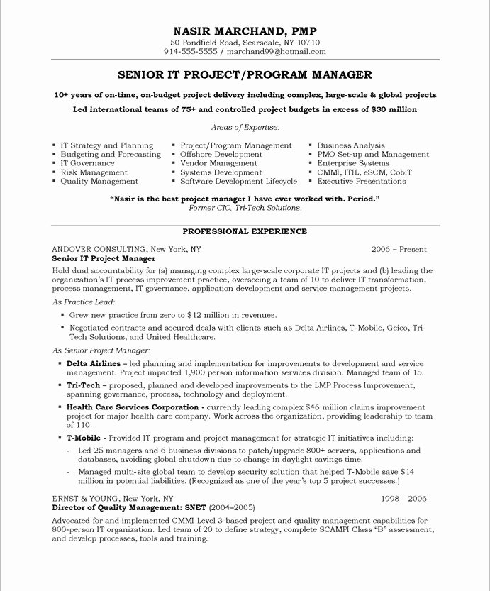 It Project Manager Free Resume Samples