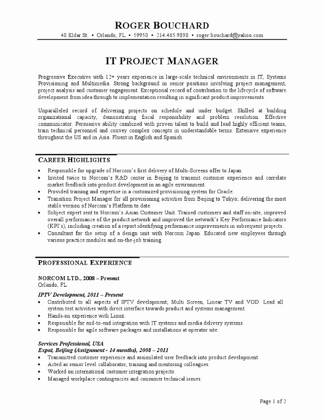 It Project Manager Resume