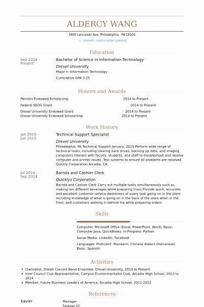 It Support Specialist Resume Best Resume Gallery
