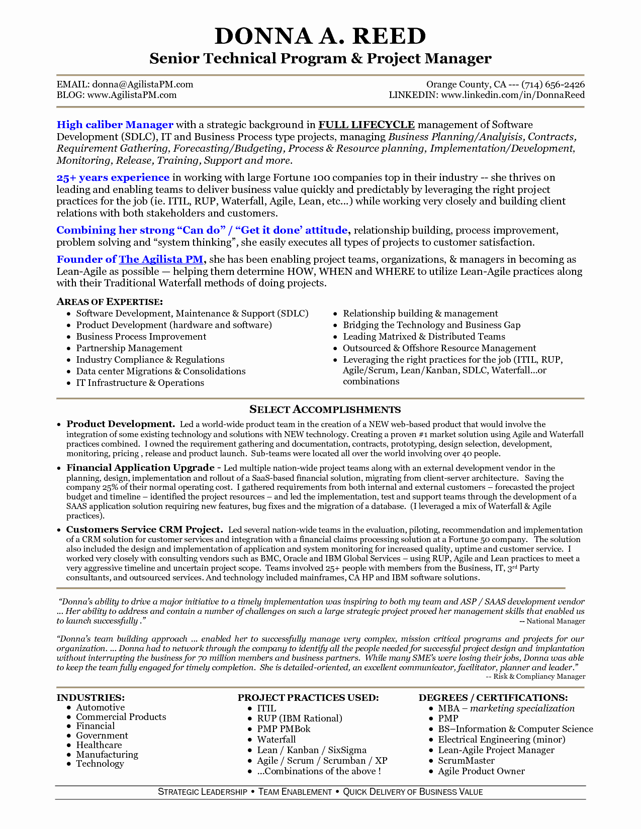 It Technical Project Manager Sample Resume Bongdaao