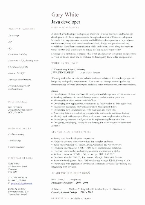 Java Developer Resume Example – thesocialsubmit