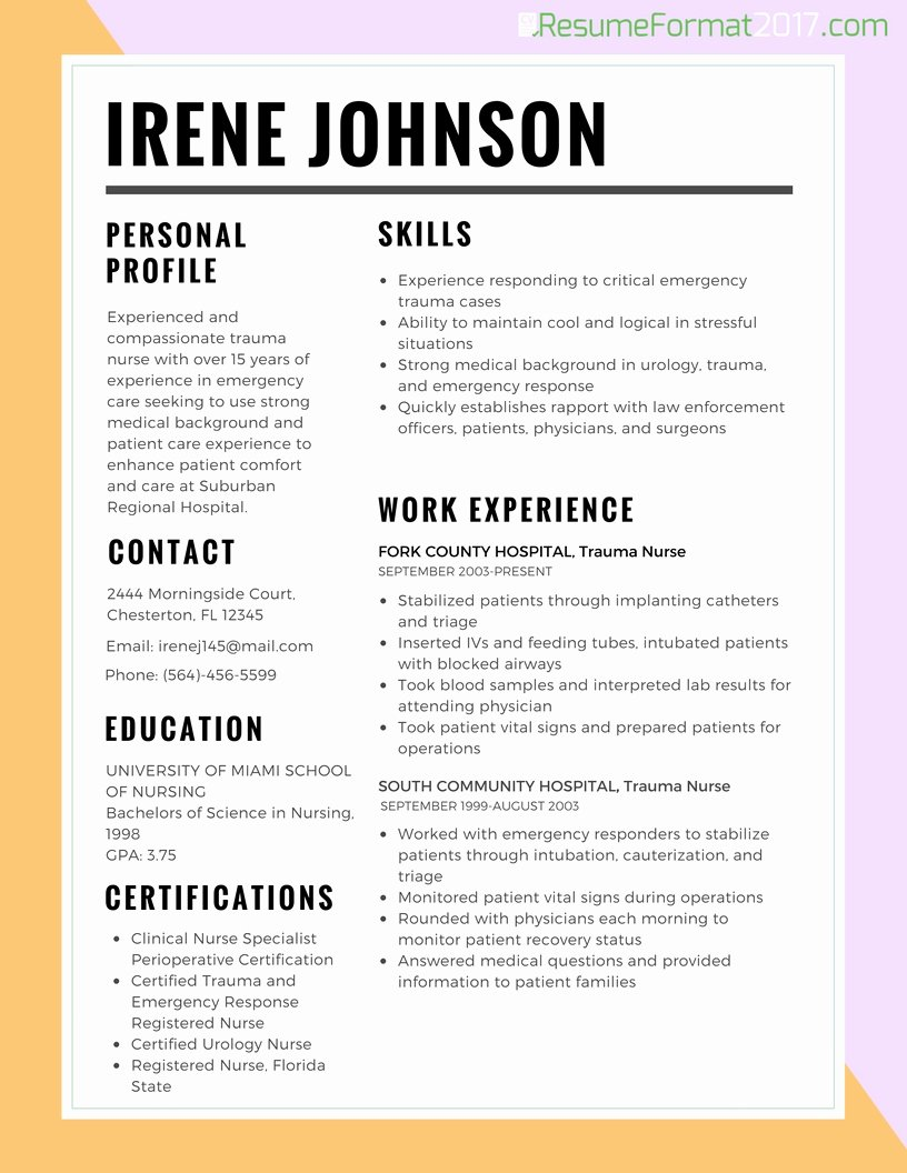 Job Resume Template 2017