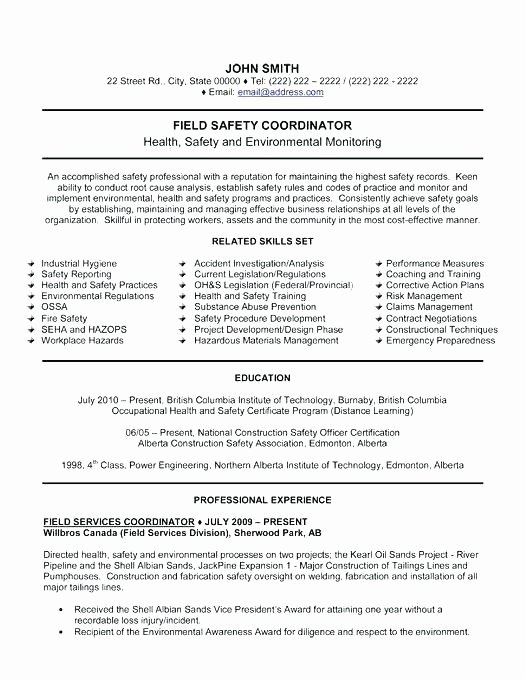 Jobs Resume Writer Example Federal Free Sample 4 Download