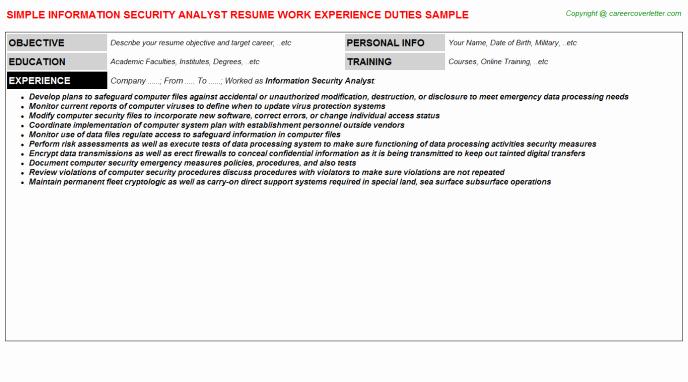 Junior Information Security Analyst Resumes