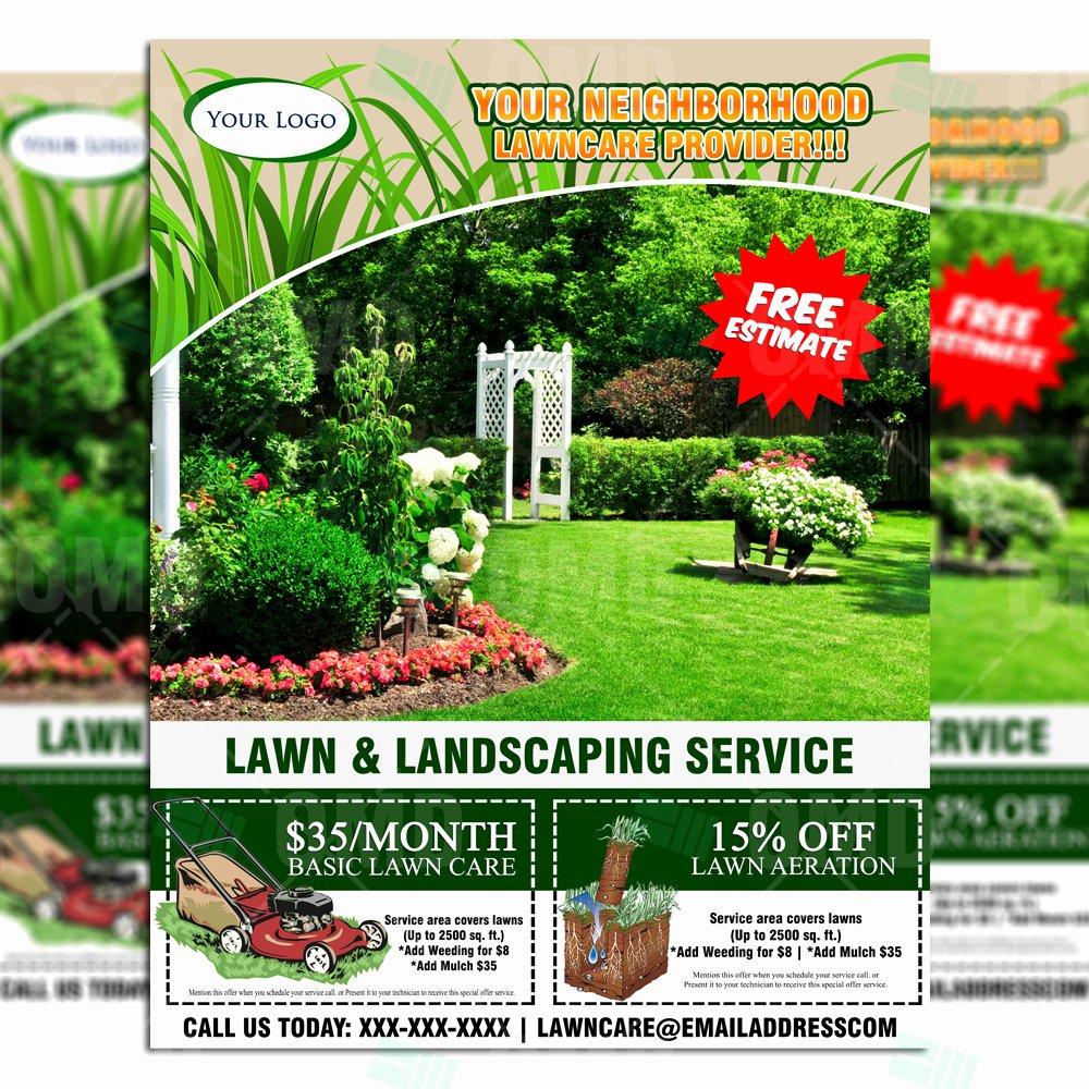 Lawn Care Flyer Design 6 – the Lawn Market