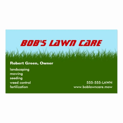 Lawn Care Green Grass Landscaping Mowing