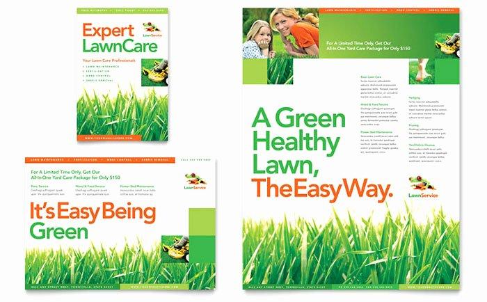 Lawn Maintenance Flyer & Ad Template Design