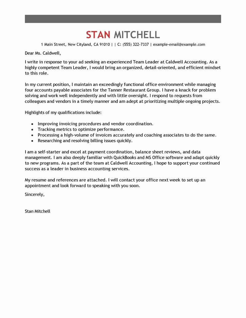 Leading Professional Team Lead Cover Letter Examples