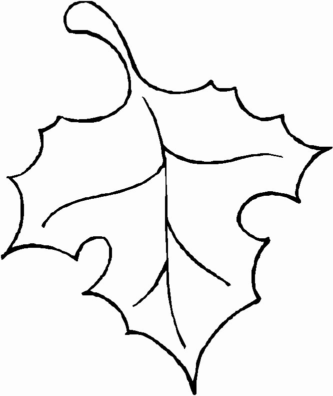 Leaf Clipart Leaf Outline Pencil and In Color Leaf