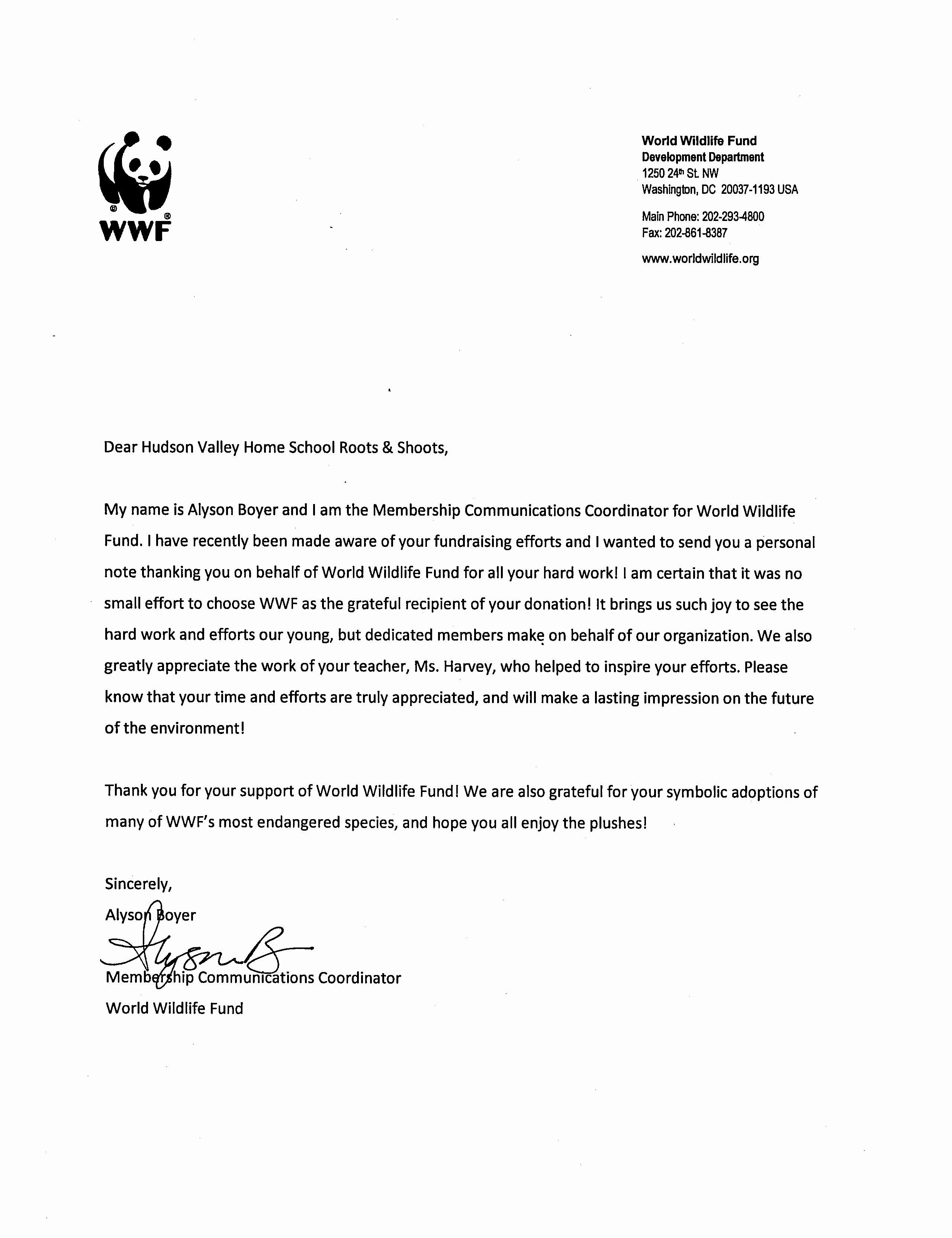 Letter Re Mendation for Volunteer Service Cover