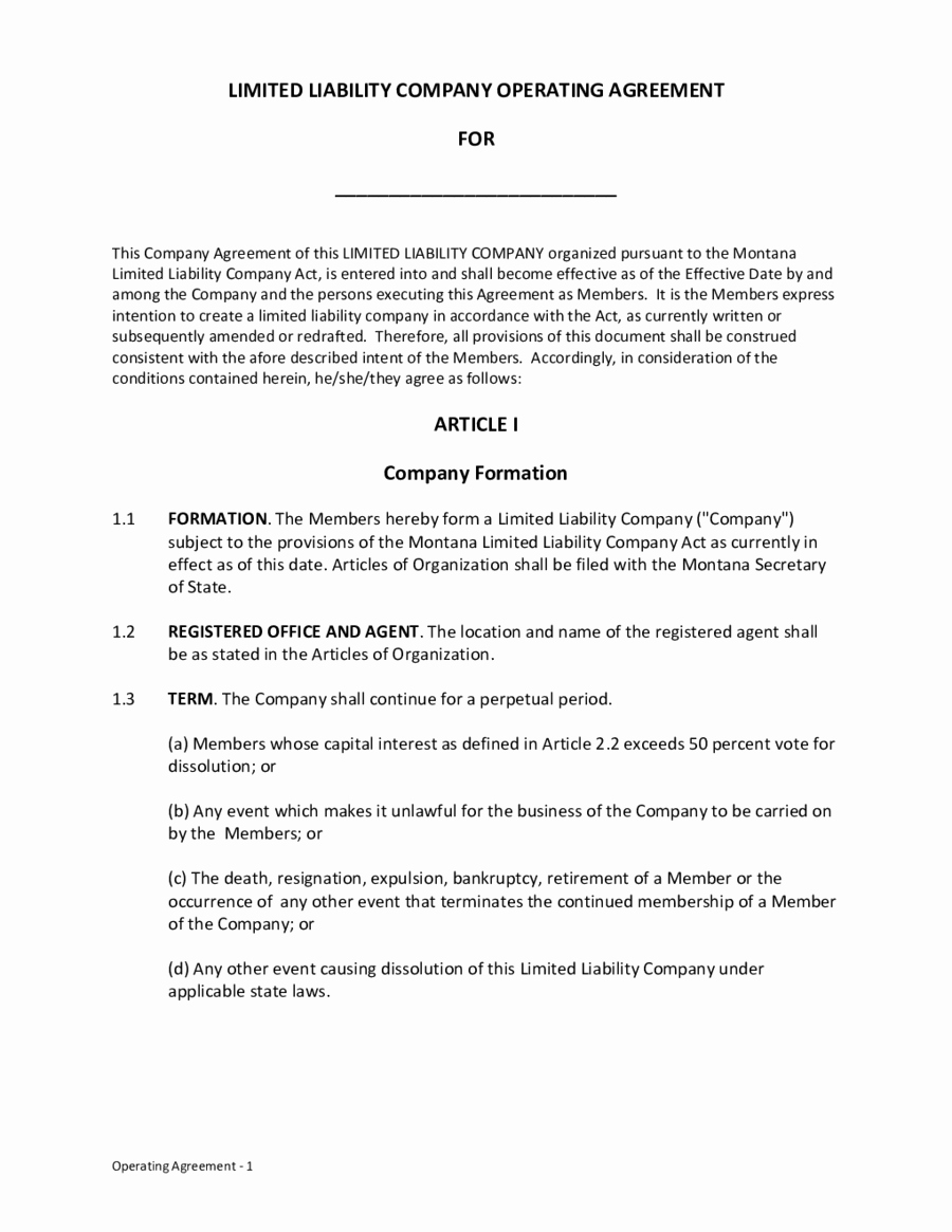 Limited Liability Pany Operating Agreement Edit Fill