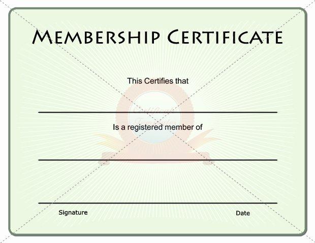 Llc Membership Certificate Template Fillable Llc