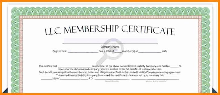 Llc Membership Certificate Template Gallery Template
