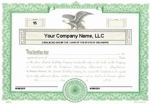Llc Membership Certificate Template How Will Llc Membership