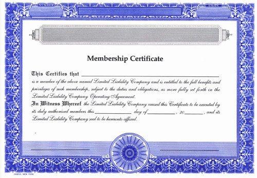 Llc Membership Certificate Template Word Drabblefo