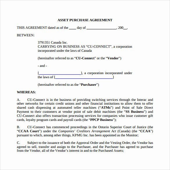 Llc Purchase Agreement Template Templates Resume