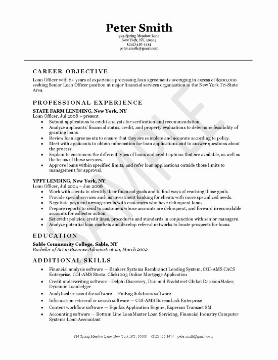 Loan Ficer Resume Example