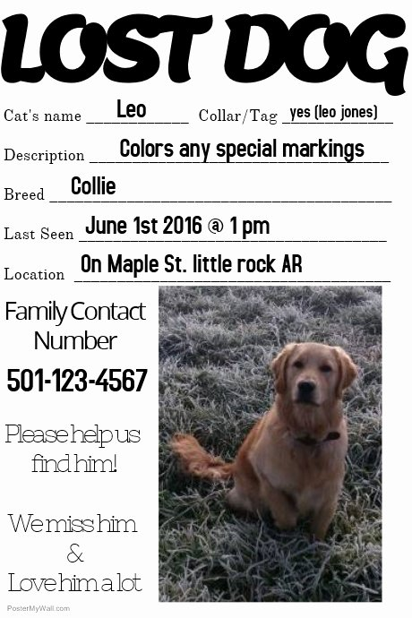 Lost Dog Missing Loved One Family Template