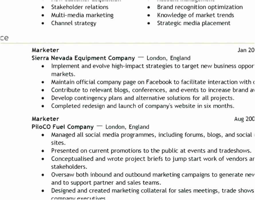 Luxury Professional Resume Pany Reviews Sketch