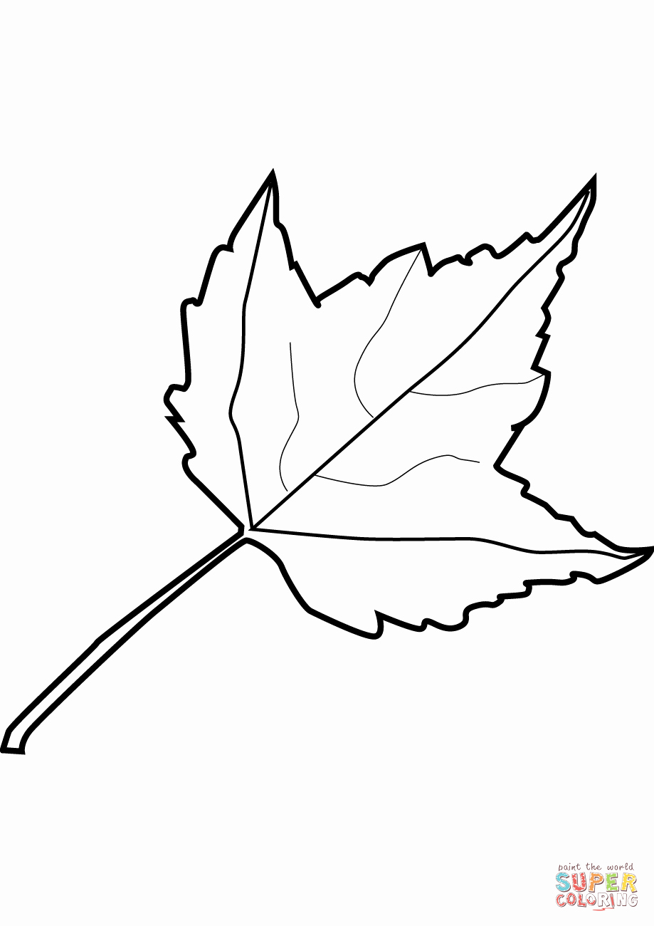 Maple Leaf Template to Print 9039