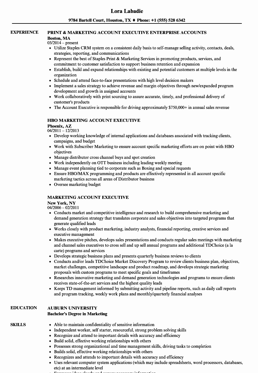 Marketing Account Executive Resume Samples