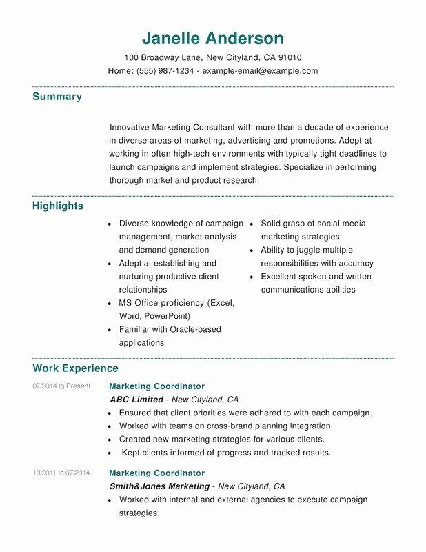 Marketing Bination Resume Resume Help