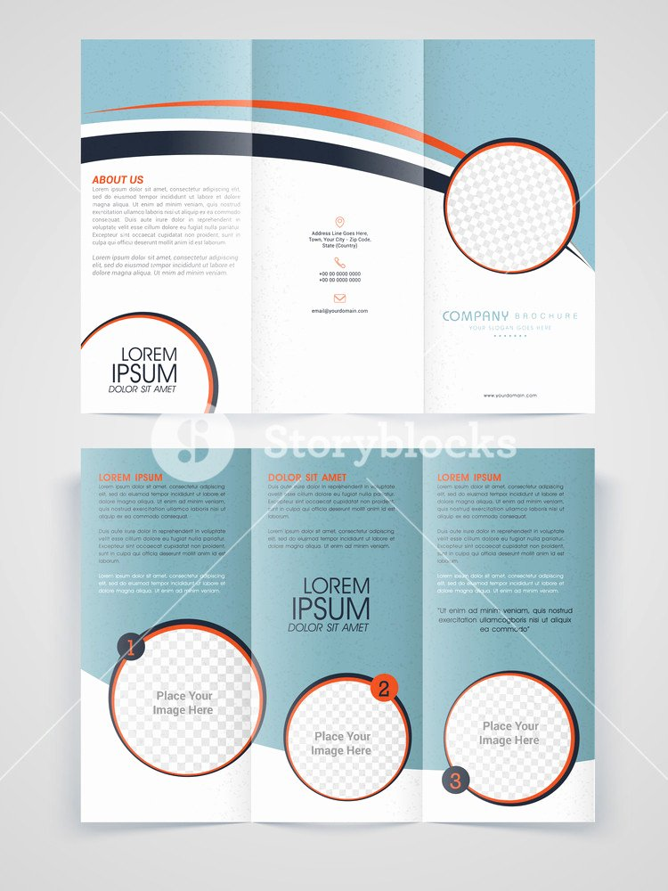 Marketing Brochure Templates Free Professional Business