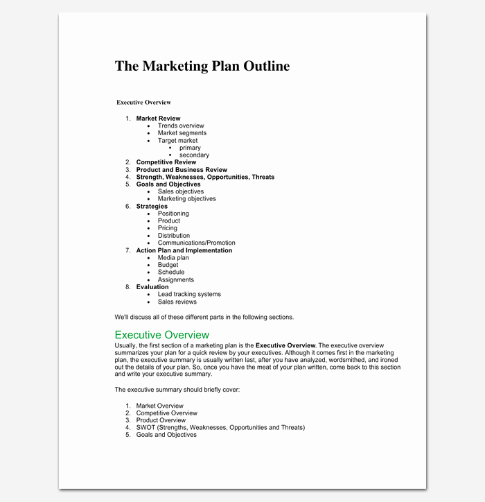 Marketing Plan Outline Template 16 Examples for Word
