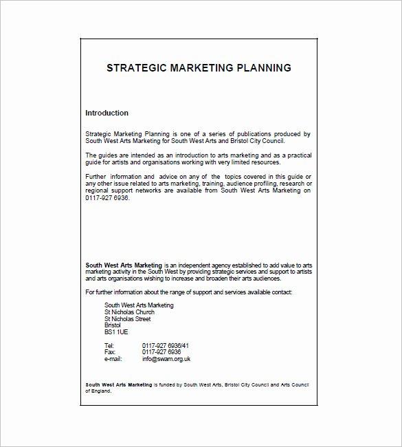 Marketing Plan Template 65 Free Word Excel Pdf format