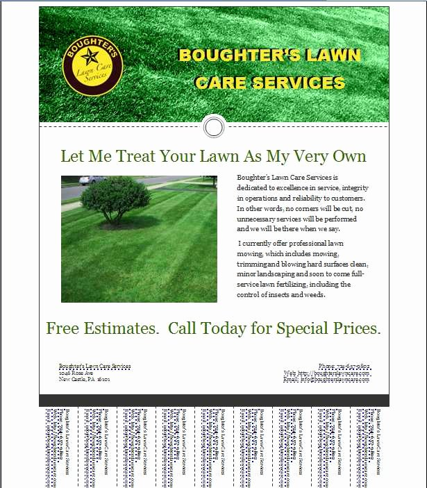 Mark's Lawn Care Business Flyer
