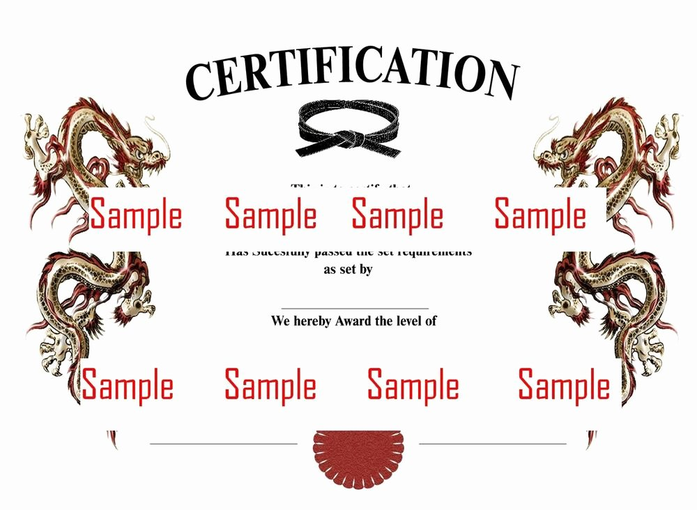 Martial Arts Certificates On Shoppinder