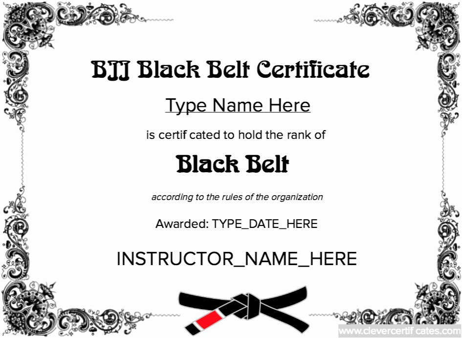 Martial Arts Grading Certificate Template Templates