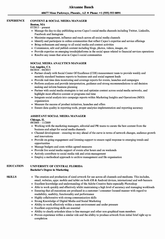Media & social Media Manager Resume Samples